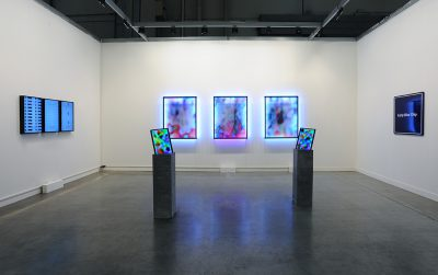 Jonas Lund 'Hype Cycle' at MiArt with Steve Turner